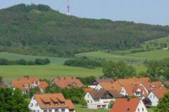 beringung_ziegler_2004_01