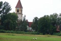 stoerche_14-07-08_013