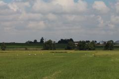 storchennest-wittelshofen-15-07-2019_005