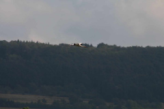 storchennest-wittelshofen-15-07-2019_021