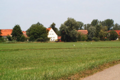 familie_storch_2005_15