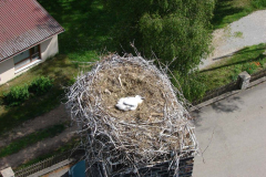 storch_0022