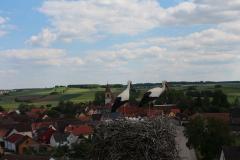 beringung-wittelshofen_30-05-2019_004