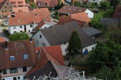 beringung-wittelshofen_30-05-2019_014